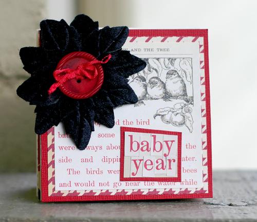 Baby year mini