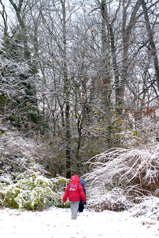 A snow