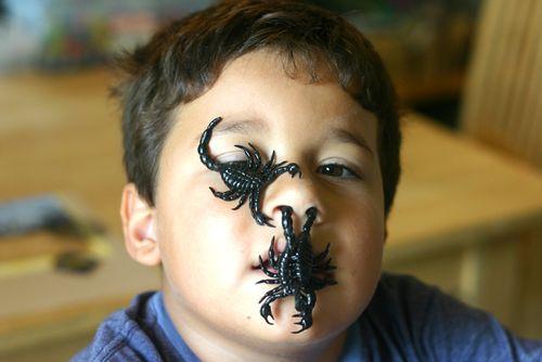 Scorpion king 700