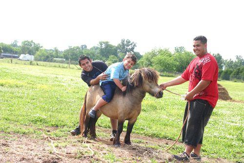 Pony rideblog