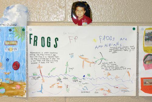 Frog2blog
