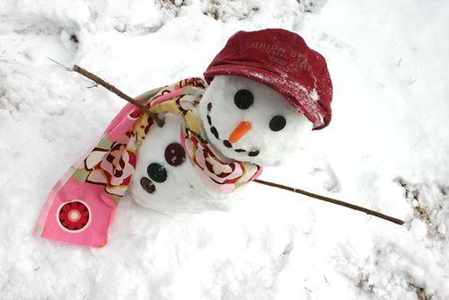 Snowgirlblog