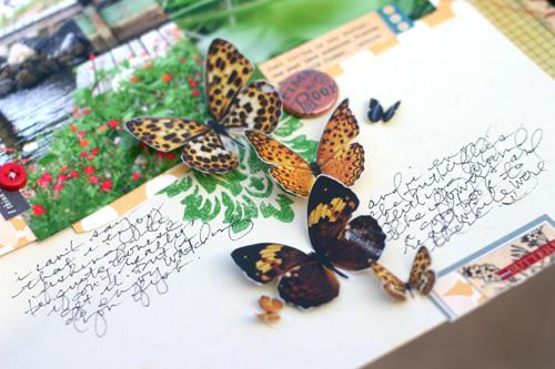 Butterfliesdet