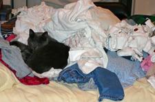 Poopsie_laundry