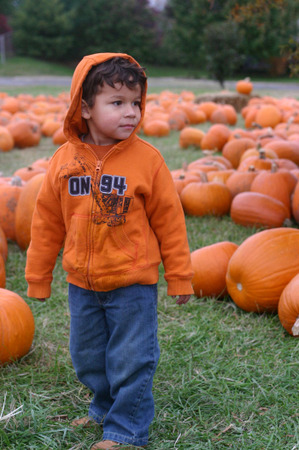 Pumpkinone