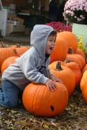 Pumpkinyell_4